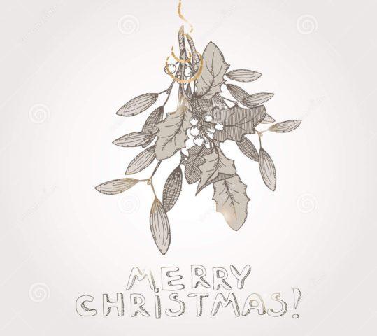Jul på Fjøla