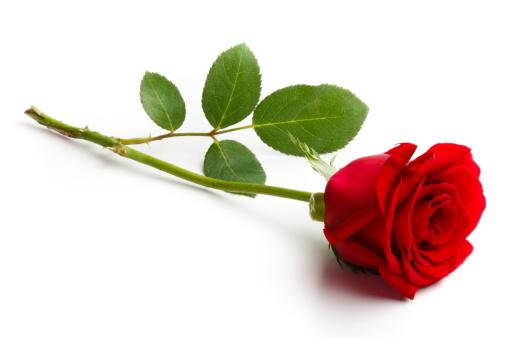 Valentines day på Fjøla